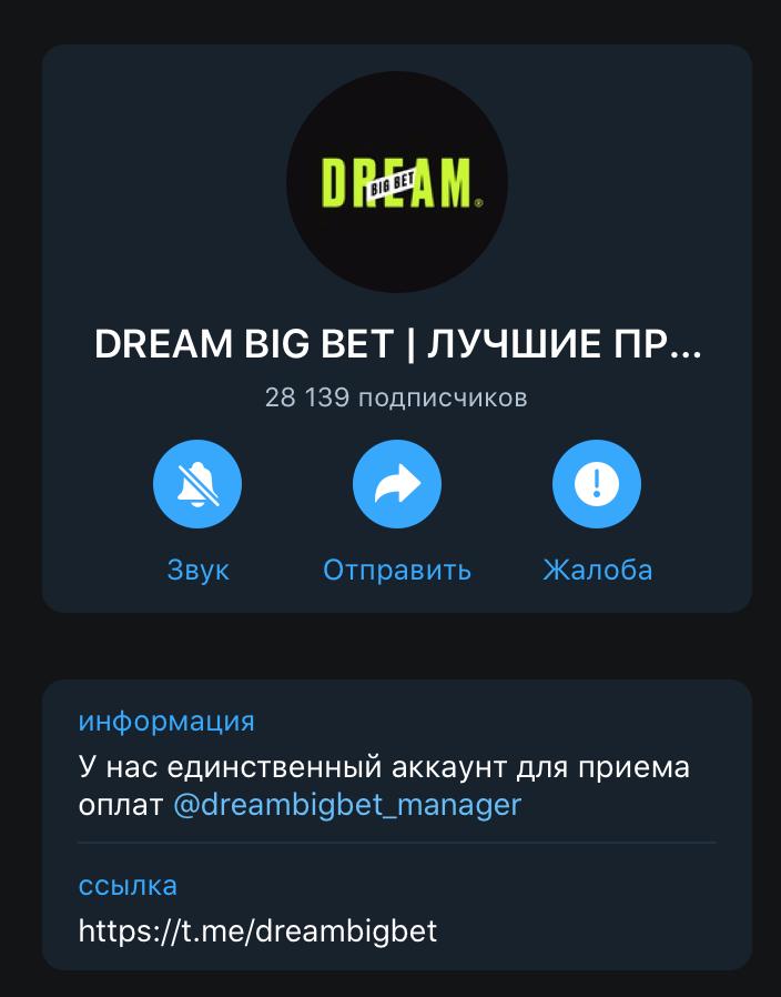 Телеграм проекта Влада Литвинова Dream Big BET
