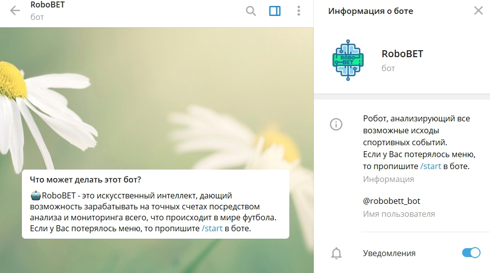 Телеграм бот robobett_bot